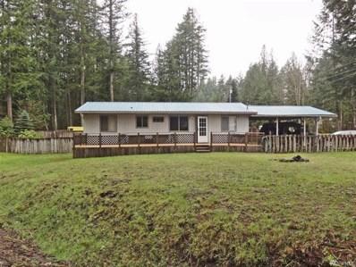 101 Mt Rainier Dr, Packwood, WA 98361 - #: 1436844