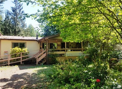 224 Mountain View Dr, Packwood, WA 98361 - #: 1455063