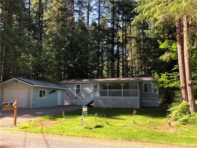 141 Maple Wy, Packwood, WA 98361 - #: 1475651
