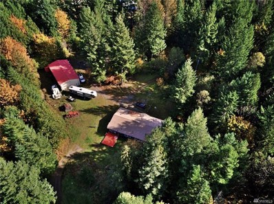 943 Cannon Rd, Packwood, WA 98361 - #: 1477190