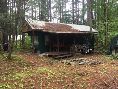 41 Evergreen Ct, Packwood, WA 98361 - #: 1491634