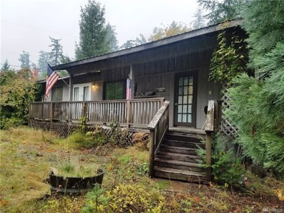144 Mountain View Dr, Packwood, WA 98361 - #: 1533692