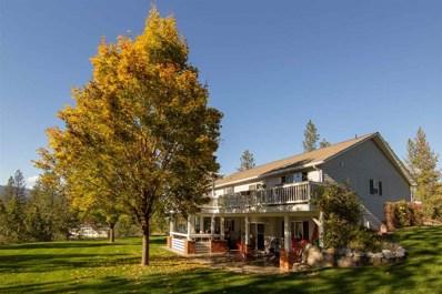 1281 Ruffed Grouse, Kettle Falls, WA 99141 - MLS#: 201825888