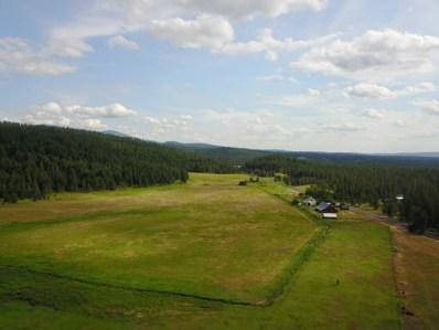 E Oregon, Elk, WA 99009 - #: 201921750