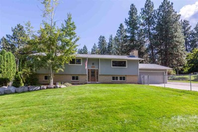 4523 S Raymond, Spokane Valley, WA 99206 - #: 201923607