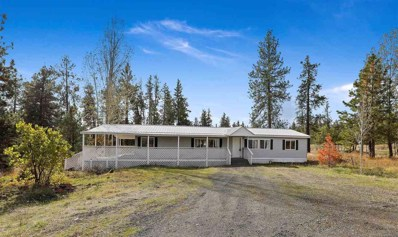 15924 S Clear Lake, Medical Lake, WA 99022 - #: 201925566
