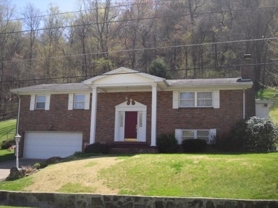 4405 Chesterfield Avenue, Charleston, WV 25304 - #: 221830