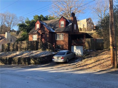 327 Grove Avenue, Charleston, WV 25302 - #: 228135