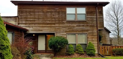 201 Powder Horn Drive, Charleston, WV 25314 - #: 229281