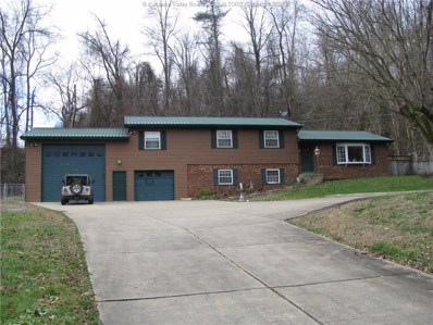 6655 Coal River Road, Tornado, WV 25202 - #: 236520