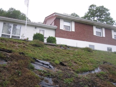 122 Adventure Rd., Springville, VA 24701 - MLS#: 46056