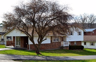 101 Christopher Avenue, Princeton, WV 24740 - MLS#: 46473