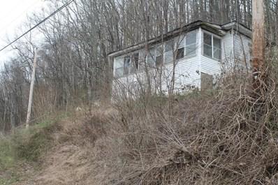221 Bulltail Hollow Road, Bluefield, WV 24701 - MLS#: 46527