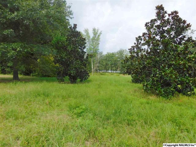 $121,000 | Lot 30  County Road 597 Cedar Bluff,AL,35959 - MLS#: 1076201
