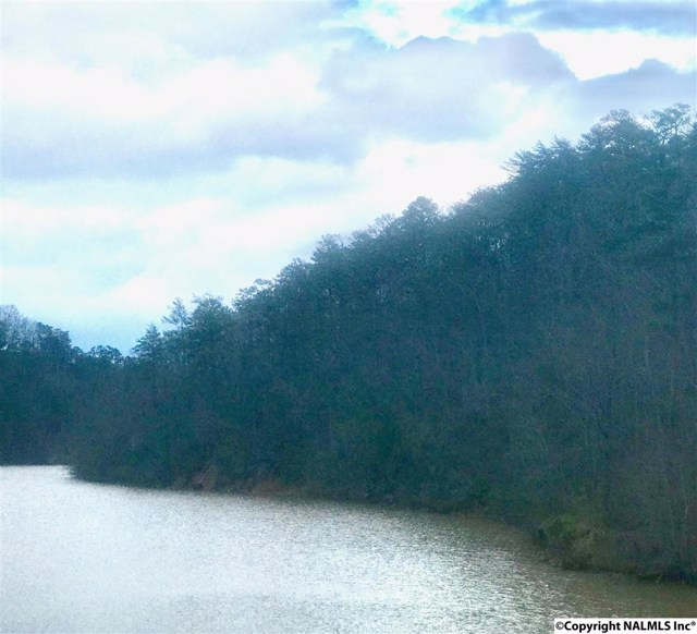 $599,000   Alabama Hwy 273 Leesburg,AL,35983 - MLS#: 1089698
