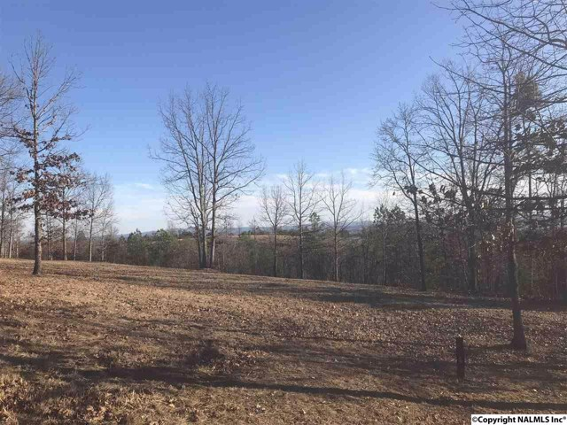$41,700 | 42  County Road 1016 Cedar Bluff,AL,35959 - MLS#: 1086103