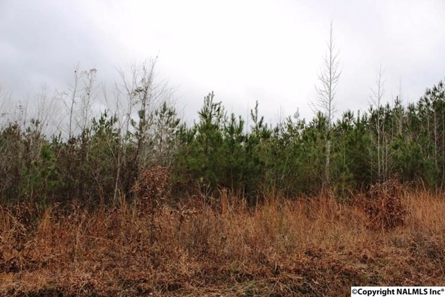 $12,500 | Lot 12  Quail Drive Centre,AL,35960 - MLS#: 1086558