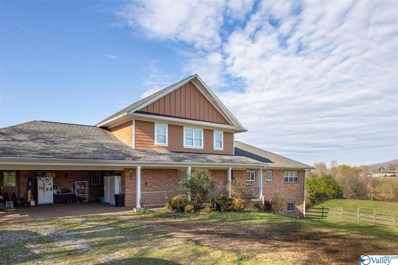 Main Photo of 256 County Road 287 a Huntsville Home for Sale